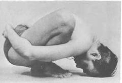 240pxMalasana-I-Yoga-Pose-BKS-Iyengar