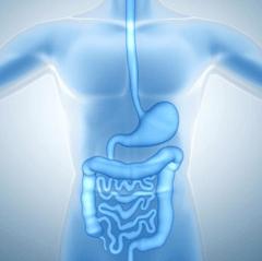 Digestive-240