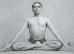 Siddhasana-240